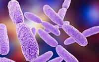 Espectrometría de masas Maldi-Tof, una tecnología coste efectiva aplicada a la microbiología clínica