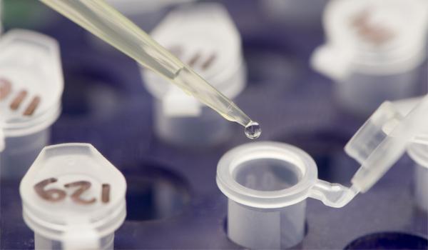 Innovadores en biomédicina